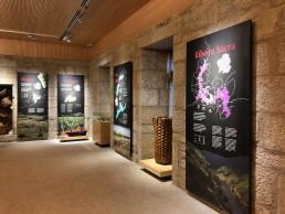 Paneles, Denominaciones de Origen. Museo del Vino. Ribadavia.