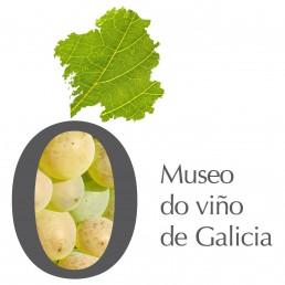 Museo do Viño (museo del vino). Logotipo treixadura.